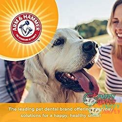Best Puppy Toothpaste- Arm & Hammer Dog Dental Care Toothpaste 1