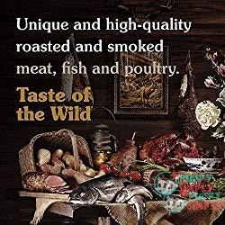 Taste Of The Wild Grain Free Premium Dry Dog Food Salmon 1