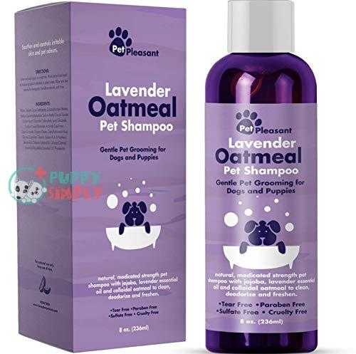 Natural Dog Shampoo for Smelly