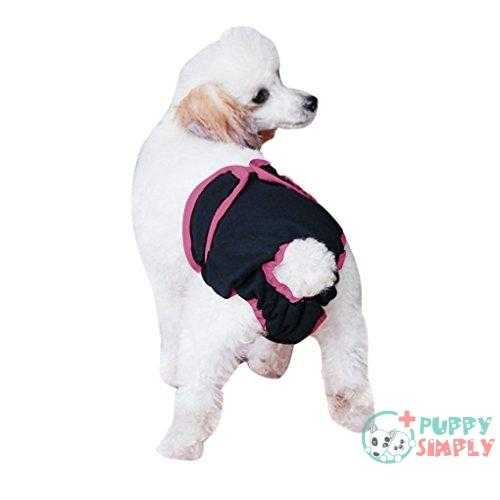 Greenery Novelty Female Pet Dog