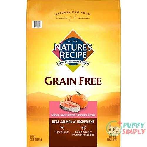 Nature's Recipe Grain Free Easy