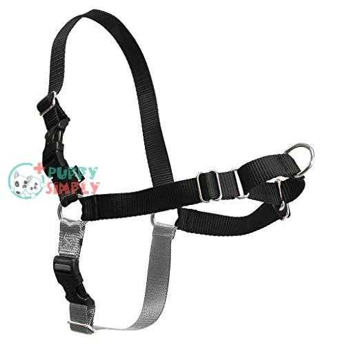 PetSafe Easy Walk Dog Harness,
