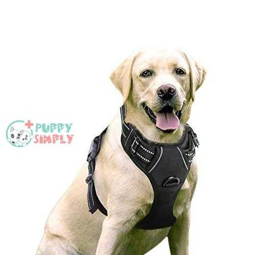 rabbitgoo Dog Harness, No-Pull Pet