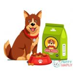dog sitting next to full dry food bowl and bag package