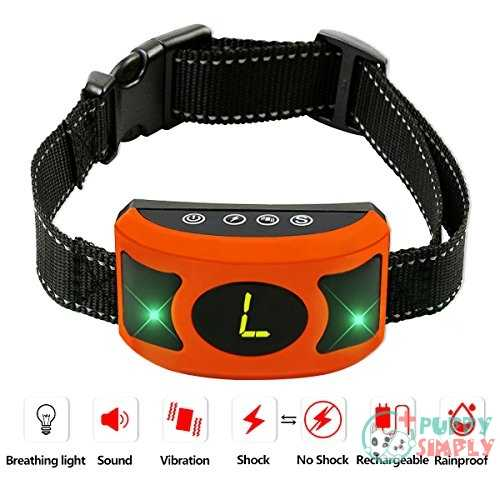 Petown Newest Version Flashing Lights Bark Collar