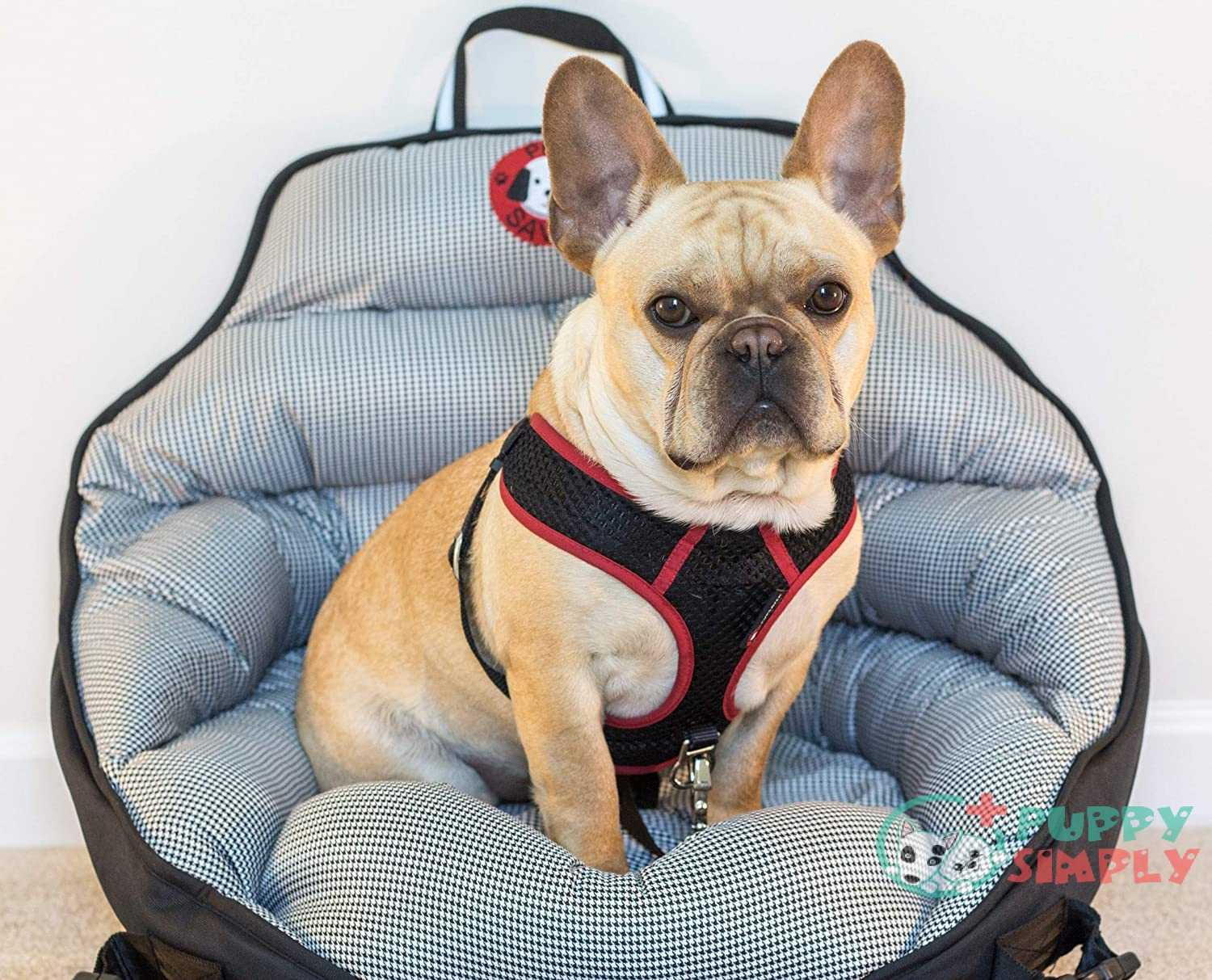 Pupsaver Crash Tested Car Safety Seat For Small Dogs