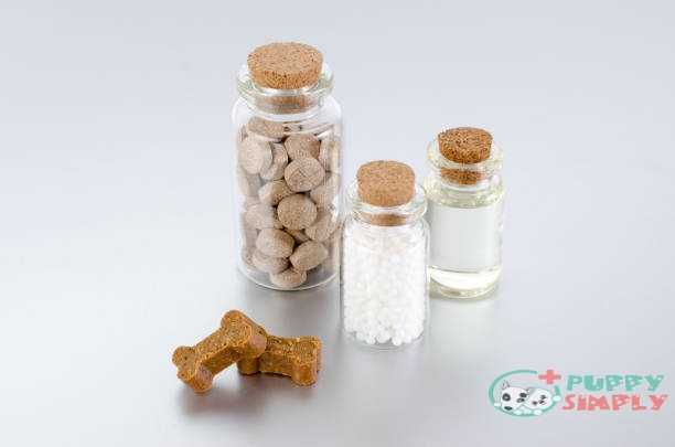 Dog Joint Supplements Ingredients and Their Benefits