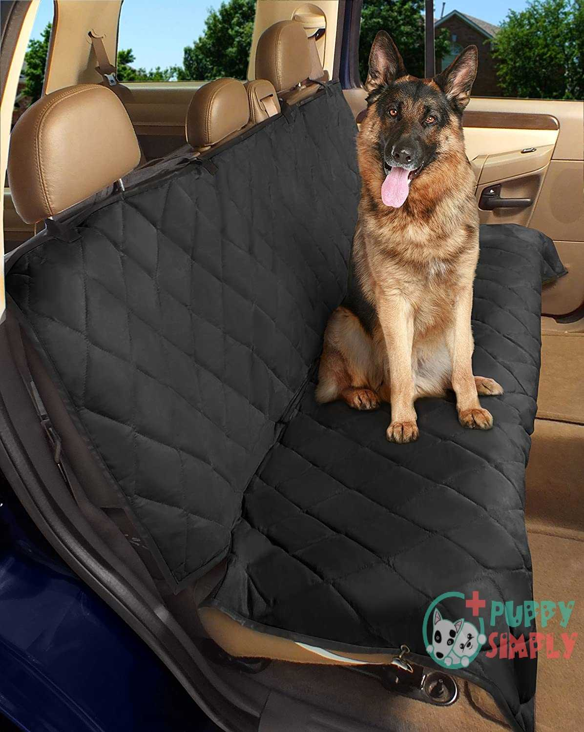 Epica Luxury Deluxe Pet Car
