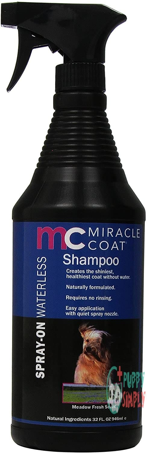 Miracle Coat Spray on Waterless
