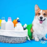 dog lotion for dry itchy skin